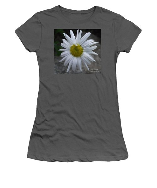 Shasta Daisy Women's T-Shirt (Athletic Fit)