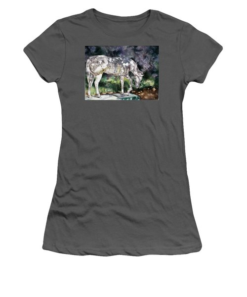 Stonerside Women's T-Shirt (Athletic Fit)