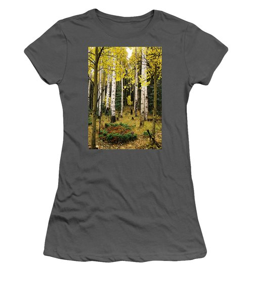 Aspen Grove In Upper Red River Valley Women's T-Shirt (Athletic Fit)