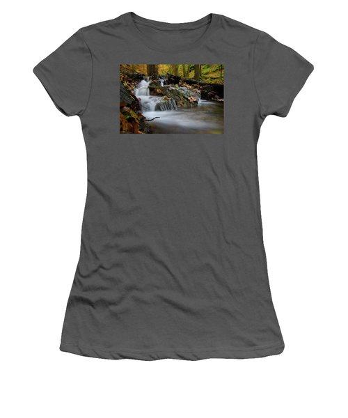 Bodetal, Harz Women's T-Shirt (Athletic Fit)