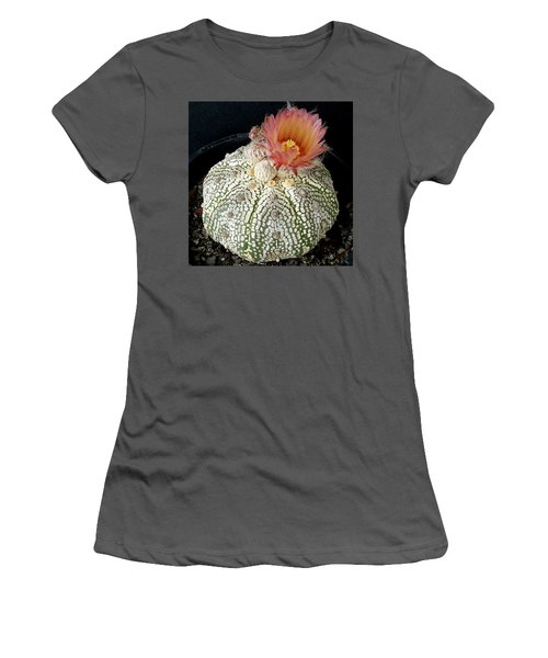 Cactus Flower 4 Women's T-Shirt (Junior Cut) by Selena Boron