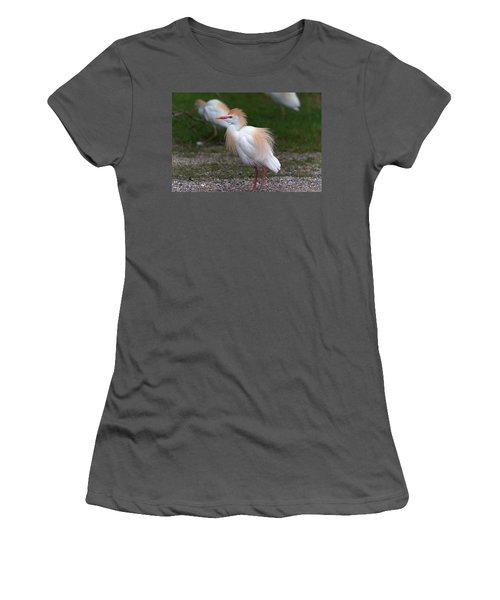 Cattle Egret Walking Close Women's T-Shirt (Athletic Fit)
