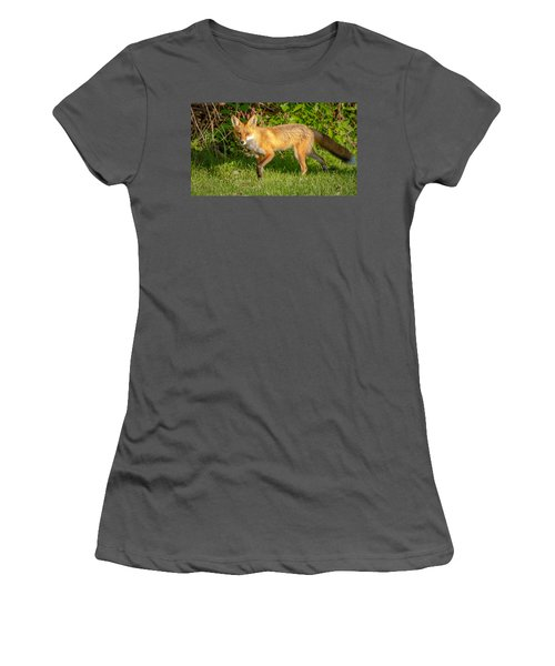 Fox Portrait  Women's T-Shirt (Athletic Fit)