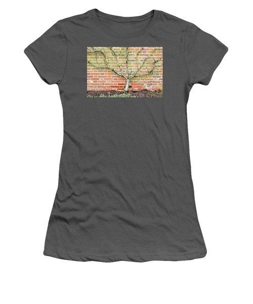 Pier Railings Women's T-Shirt (Athletic Fit)