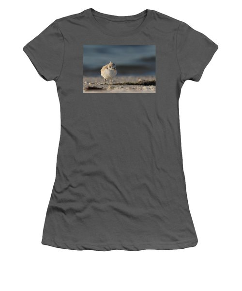 Snowy Plover Women's T-Shirt (Athletic Fit)