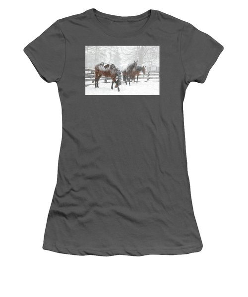 Tails To The Wind Women's T-Shirt (Junior Cut) by Gary Hall