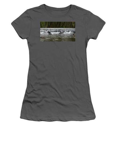 Waterfall 003 Women's T-Shirt (Athletic Fit)