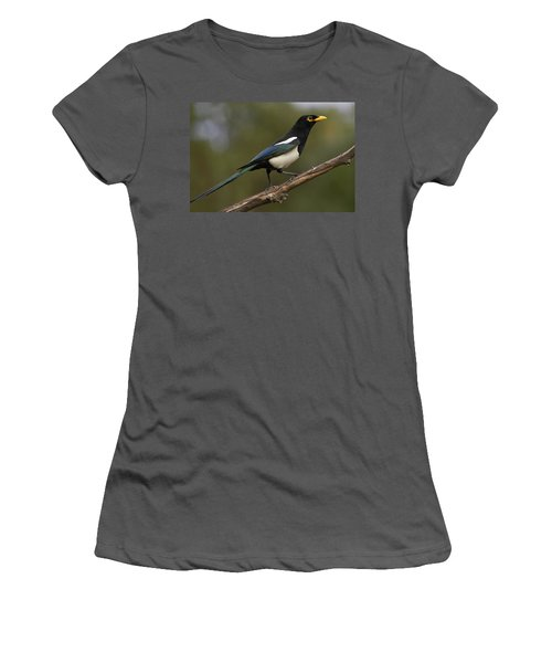 Yellow-billed Magpie Women's T-Shirt (Athletic Fit)