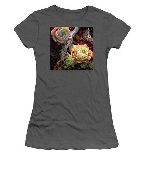 Succulents Women's T-Shirt (Athletic Fit)
