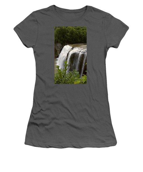Waterfall Women's T-Shirt (Junior Cut) by Raymond Earley