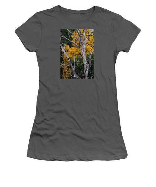 Fall Color Virginia West Virginia Women's T-Shirt (Junior Cut) by Kevin Blackburn