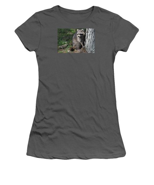 A Curious Raccoon Women's T-Shirt (Athletic Fit)