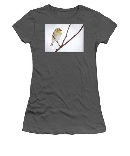 A Sign Of Spring Women's T-Shirt (Junior Cut) by Ricky L Jones