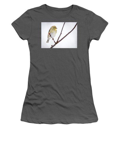 A Sign Of Spring Women's T-Shirt (Junior Cut)