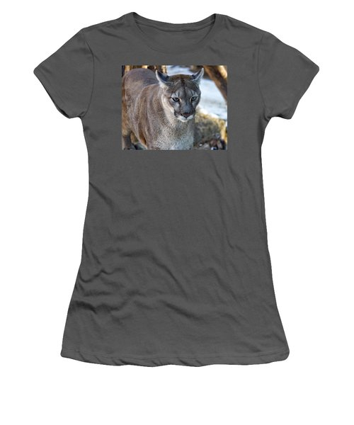 A Stunning Mountain Lion Women's T-Shirt (Athletic Fit)