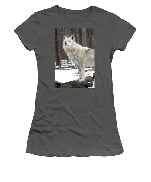 A Wolfs Modeling Pose Women's T-Shirt (Junior Cut) by Gary Slawsky