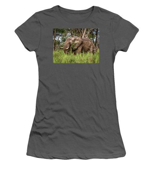 Alpha Male Elephant Women's T-Shirt (Athletic Fit)