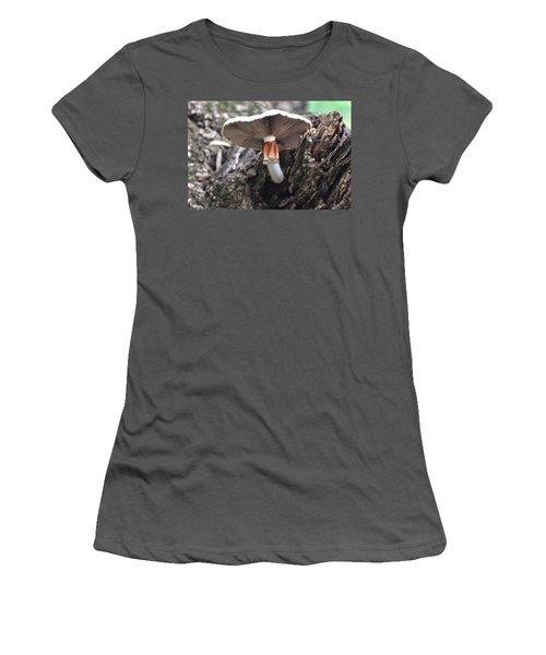 Amanita Women's T-Shirt (Junior Cut) by Chris Flees