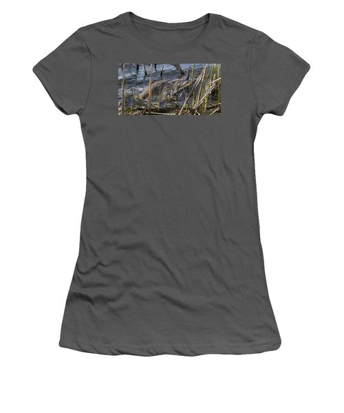 American Bittern Women's T-Shirt (Athletic Fit)