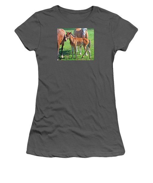 Amish Pony Women's T-Shirt (Athletic Fit)