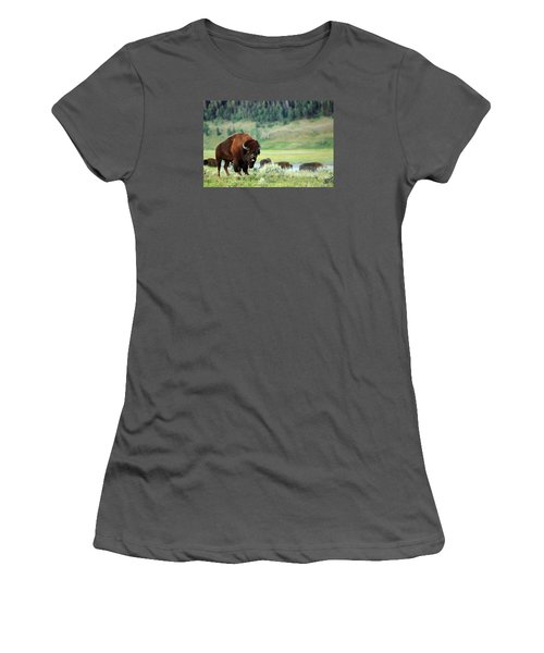 Angry Buffalo Women's T-Shirt (Athletic Fit)