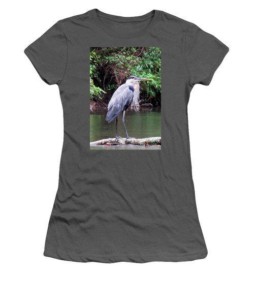 Bearded Blue Heron Women's T-Shirt (Athletic Fit)