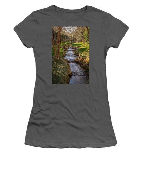 Beautiful Stream Women's T-Shirt (Athletic Fit)