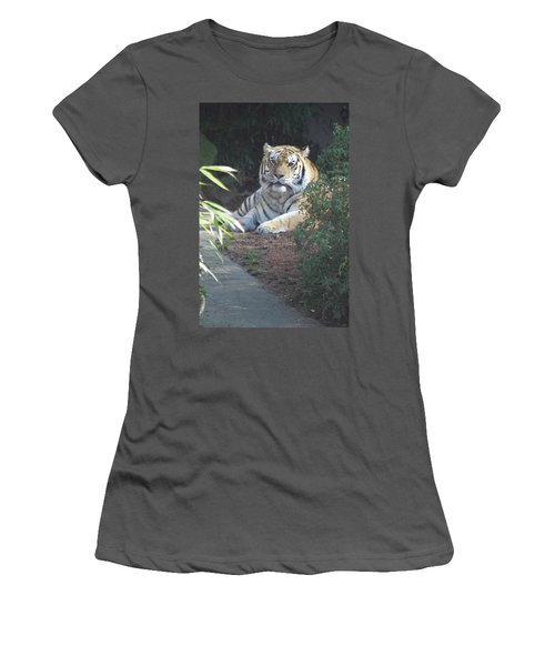 Women's T-Shirt (Junior Cut) featuring the photograph Beyond The Branches by Laddie Halupa