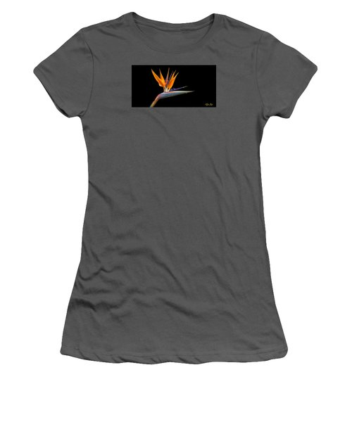 Bird Of Paradise Flower On Black Women's T-Shirt (Athletic Fit)