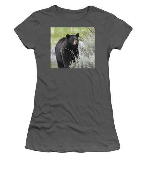Black Bear Sow Women's T-Shirt (Athletic Fit)