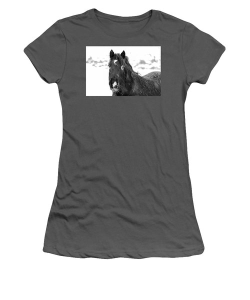 Black Horse Staring In The Snow Black And White Women's T-Shirt (Athletic Fit)