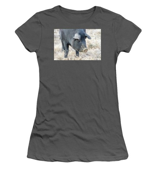 Women's T-Shirt (Junior Cut) featuring the photograph Black Pig Close-up by James BO Insogna