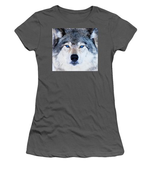 Women's T-Shirt (Junior Cut) featuring the photograph Blue Eyed Wolf Portrait by Mircea Costina Photography
