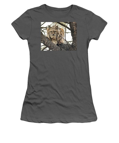 Bobcat In Winter Women's T-Shirt (Athletic Fit)