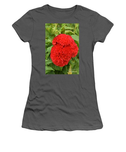 Bright Red Cockscomb Women's T-Shirt (Athletic Fit)