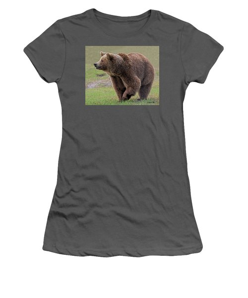 Brown Bear 14.5 Women's T-Shirt (Athletic Fit)