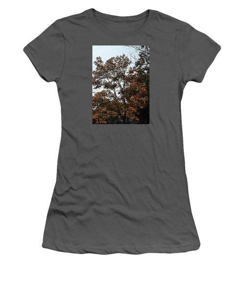 Brown Women's T-Shirt (Junior Cut) by Jana E Provenzano