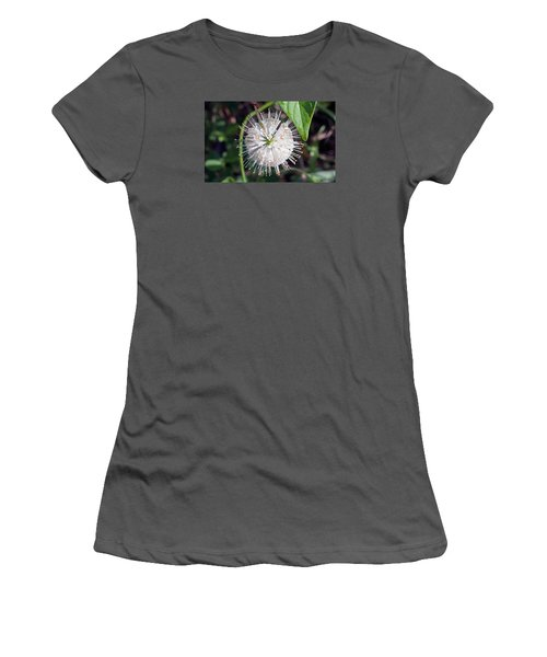Buttonbush Women's T-Shirt (Junior Cut) by Kenneth Albin