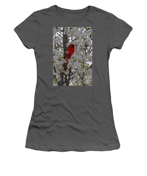 Women's T-Shirt (Junior Cut) featuring the photograph Cardinal In White Blossoms by Barbara Bowen