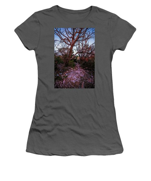 Colorado Bend State Park Gorman Falls Trail #3 Women's T-Shirt (Athletic Fit)