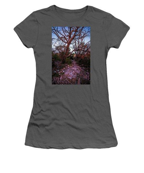 Colorado Bend State Park Gorman Falls Trail #3 Women's T-Shirt (Junior Cut)