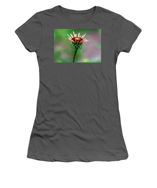 Coneflower Bloom Women's T-Shirt (Athletic Fit)