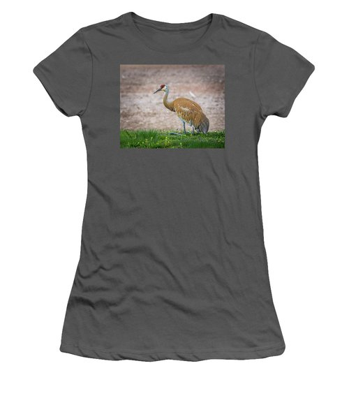 Women's T-Shirt (Athletic Fit) featuring the photograph Crane Down by Bill Pevlor