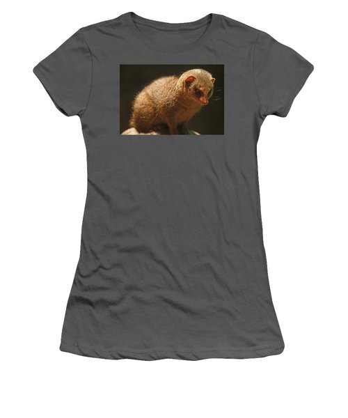 Women's T-Shirt (Junior Cut) featuring the photograph Curiosity At Rest by Laddie Halupa