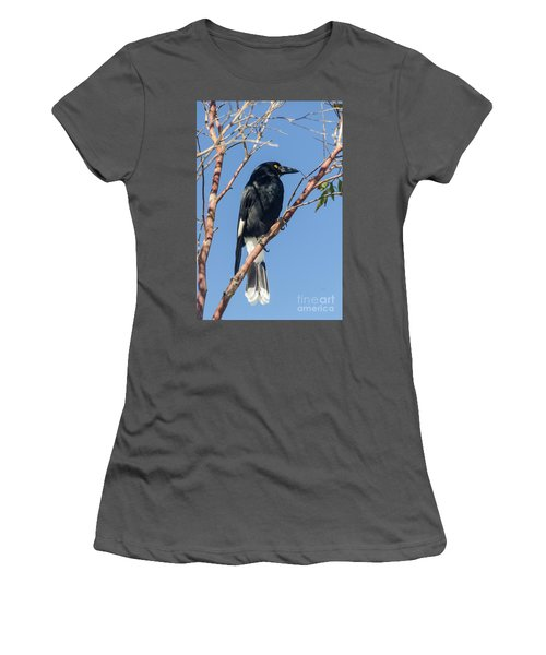 Currawong Women's T-Shirt (Athletic Fit)