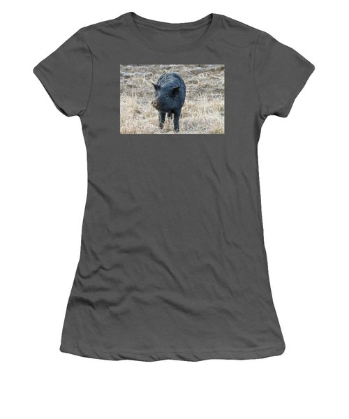 Women's T-Shirt (Junior Cut) featuring the photograph Cute Black Pig by James BO Insogna