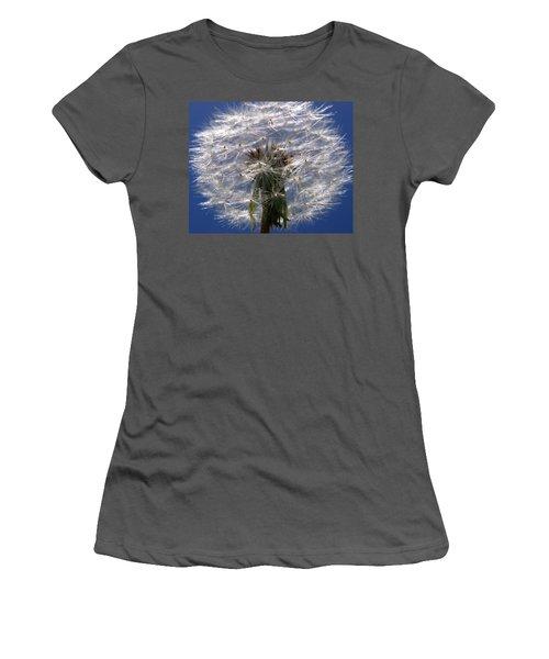 Dandelion Women's T-Shirt (Athletic Fit)