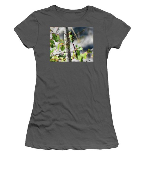 Darner Women's T-Shirt (Athletic Fit)