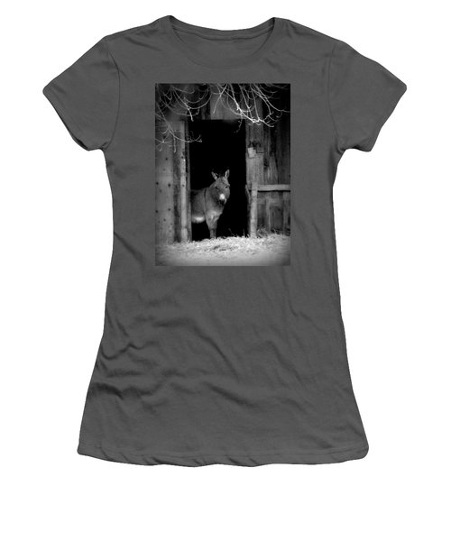 Women's T-Shirt (Junior Cut) featuring the painting Donkey In The Doorway by Michael Dohnalek