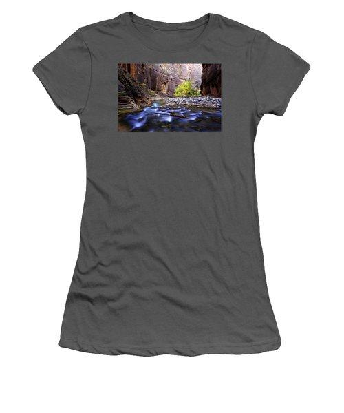 Women's T-Shirt (Junior Cut) featuring the photograph Dynamic Zion by Chad Dutson